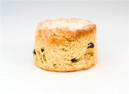 Picture for manufacturer Fruit Scone